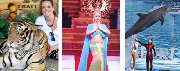 bangkok-pattaya-tours